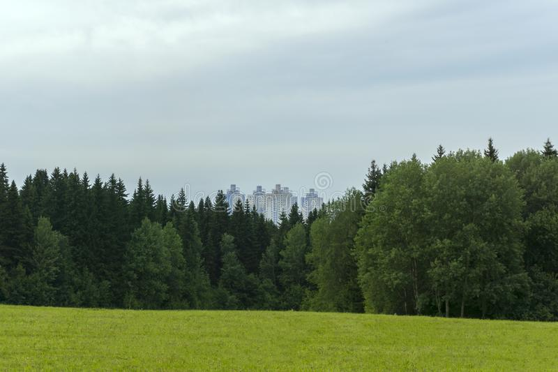 Stadsfjärdedel efter skog arkivfoton