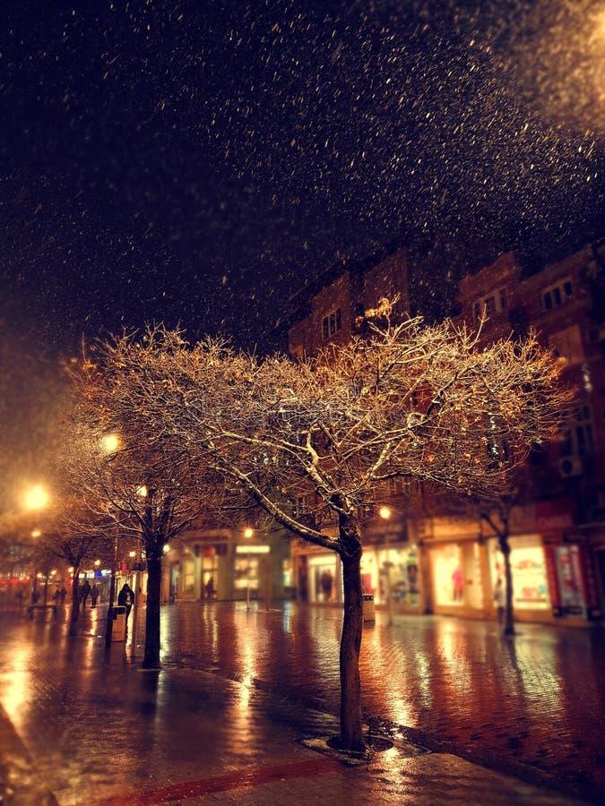 Stadsgata på den snöig natten för vinter med att gå för folk suddigheta stadslampor snowfall royaltyfri fotografi