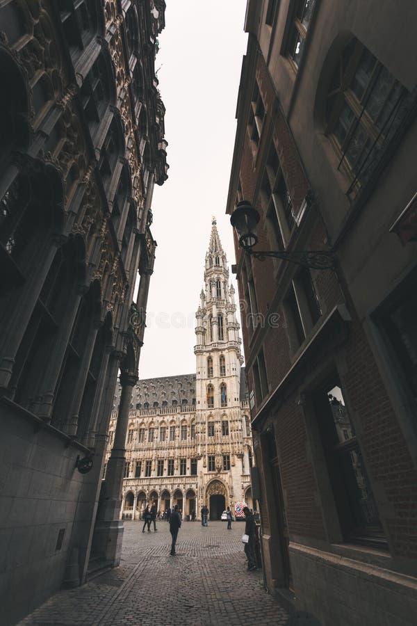 Stadshus p? det storslagna st?llet, Bryssel, Belgien fotografering för bildbyråer