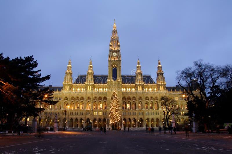 stadshus vienna arkivbild