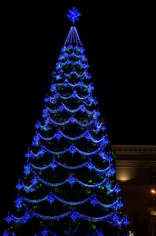 Stadskerstboom bij nacht stock afbeelding