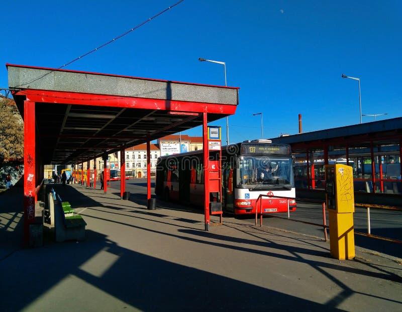 Stadskollektivtrafikbussar i Prague royaltyfria bilder