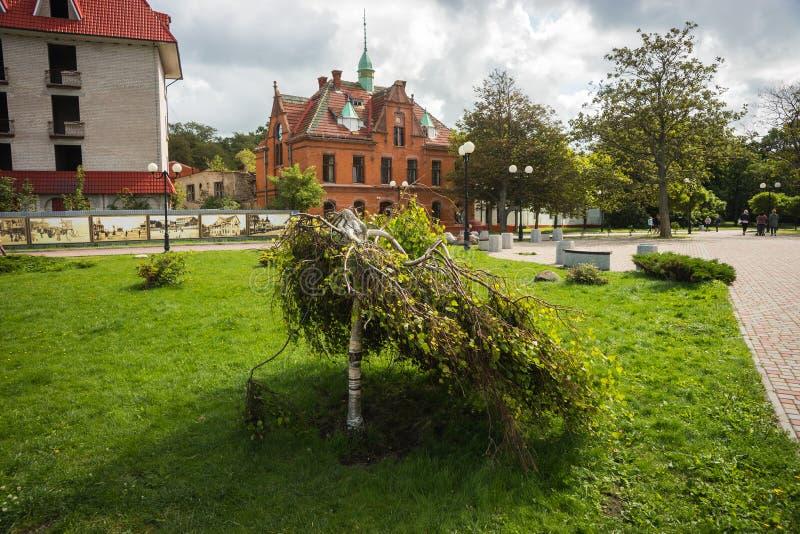 Stadslandschap in Zelenogradsk, Kaliningrad-gebied, Rusland royalty-vrije stock foto
