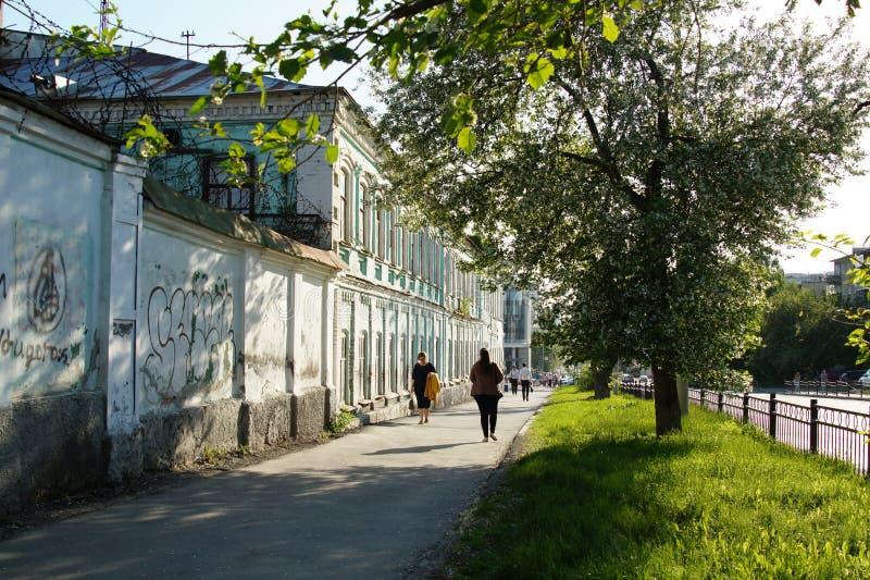 Stadslandskap: Gatan för 60 Kuybyshev, trottoaren, ett äppleträd blommar på en solig dag royaltyfri foto