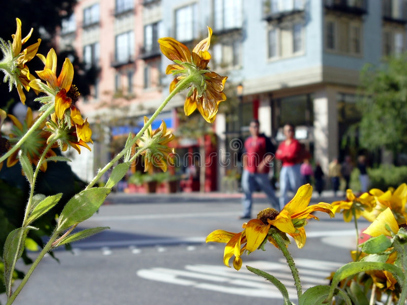 Download Stadsliv fotografering för bildbyråer. Bild av härlig, folk - 31179