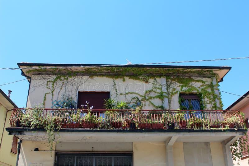 Stadsmening van Pescia, Italië stock afbeelding