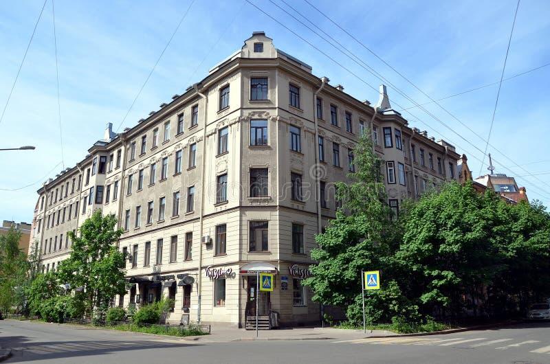 Stadsmeningen van St. Petersburg stock foto's