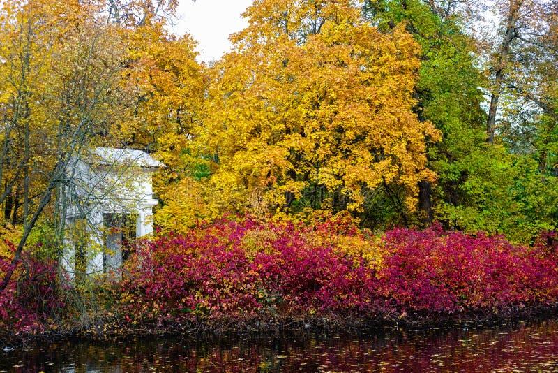 Stadspark in de herfstseizoen stock afbeelding