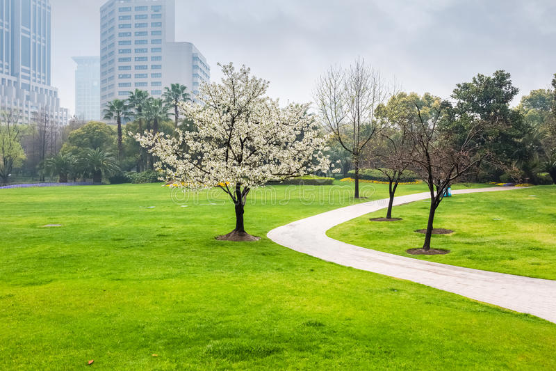 Stadspark in de lente royalty-vrije stock afbeelding