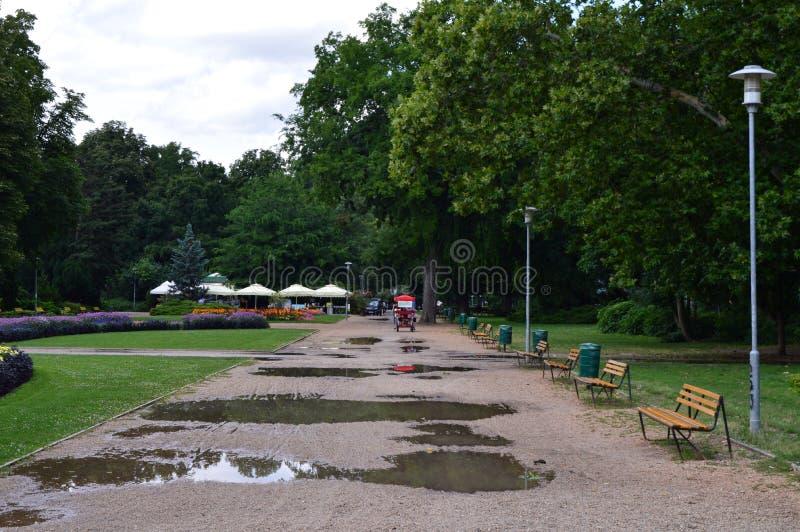Stadspark na regen stock foto