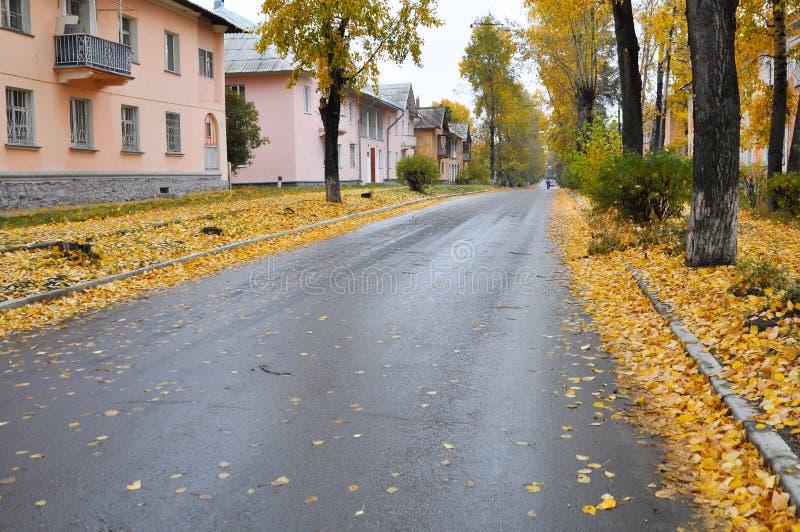 Stadt Angarsk Sommer 2011 - 68 lizenzfreie stockbilder