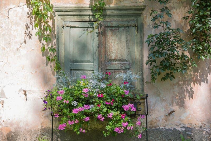 Stadt Riga, lettische Republik Altbaufenster mit Blumen und Retrostil 2019 27 juli stockfotografie