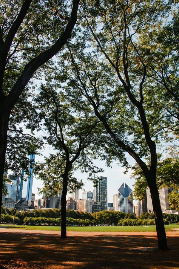 Stadt von im Stadtzentrum gelegenen USA Gebäuden Chicagos stockbild