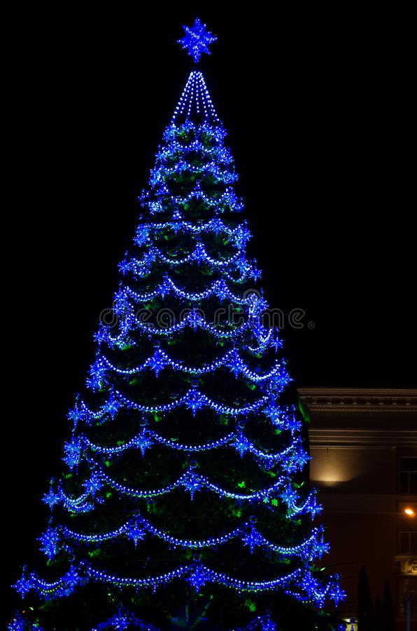Stadt-Weihnachtsbaum nachts stockbild