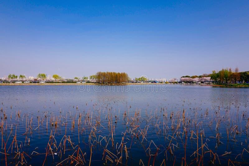 Stadtansicht von Wuxi, Porzellan stockbild