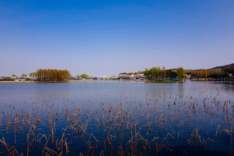 Stadtansicht von Wuxi, Porzellan lizenzfreie stockfotografie
