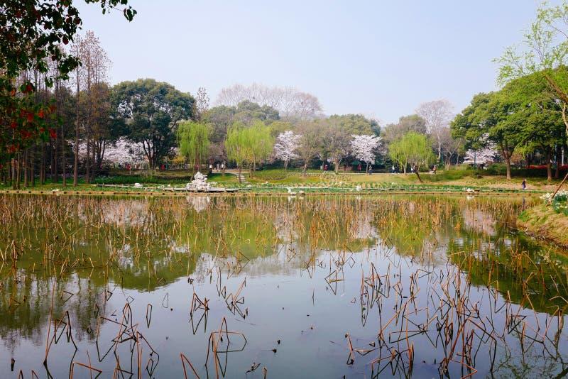 Stadtansicht von Wuxi, Porzellan stockbilder