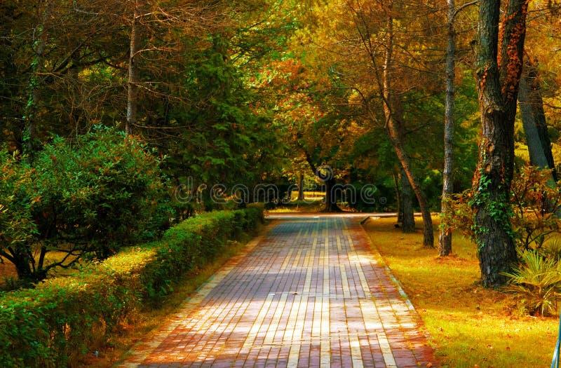 Stadtgarten im Herbst lizenzfreies stockbild
