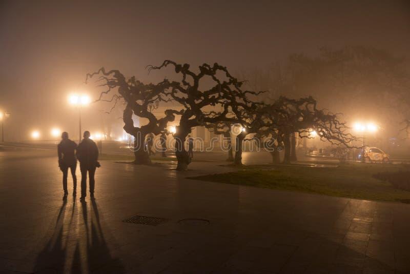 Stadtlandschaft im Nebel lizenzfreie stockfotografie