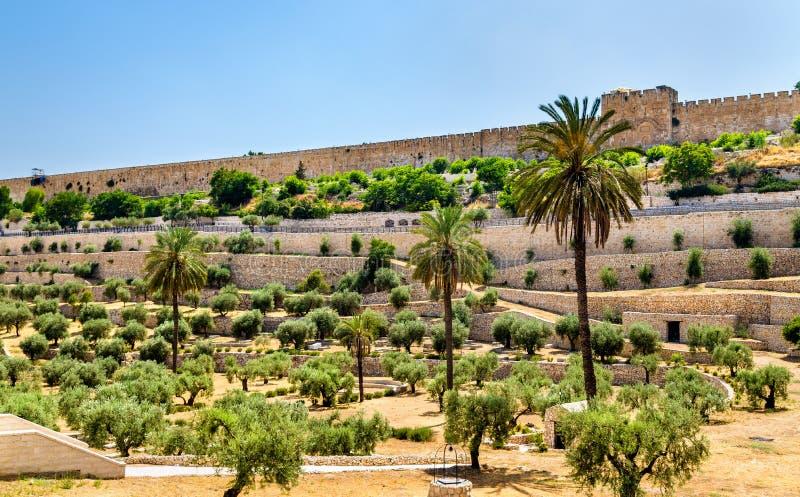 Stadtmauern von Jerusalem über dem Kidrontal stockfotografie