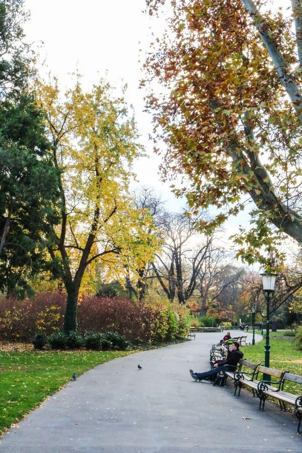 Stadtpark, вена Австрия в сезоне осени стоковое изображение rf