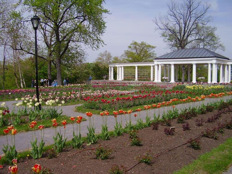 Stadtpark im Frühjahr stockbilder