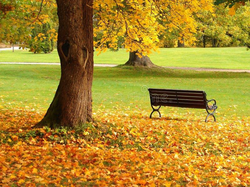 Stadtpark im Herbst lizenzfreie stockbilder