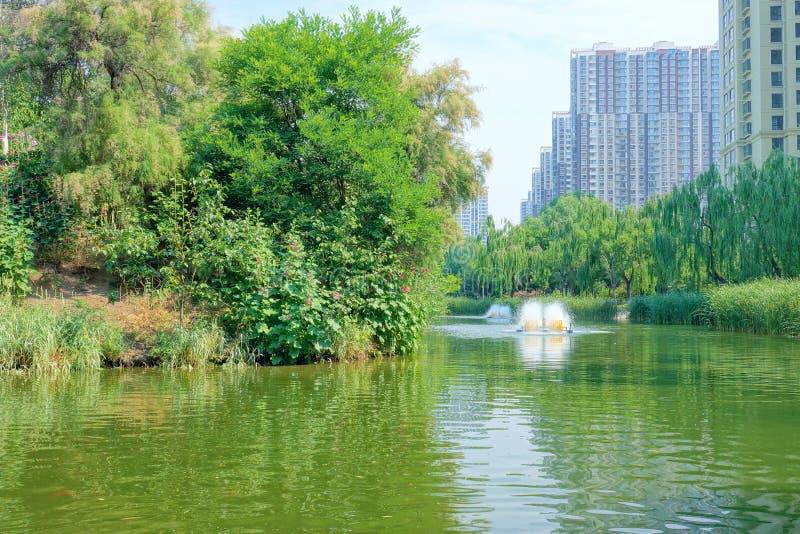 Stadtparklandschaft lizenzfreies stockbild