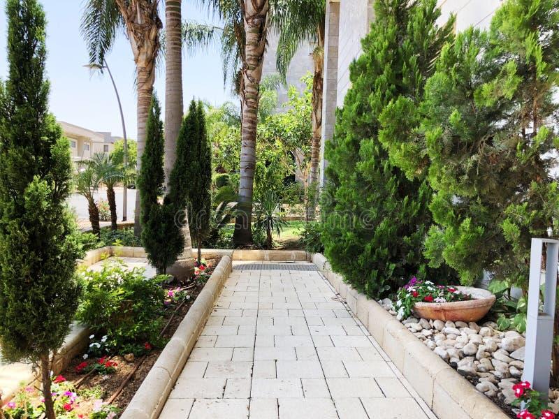 Stadtparkplatz mit grünen Palmen, Hecken, Sträuchern und Alleen stockbilder