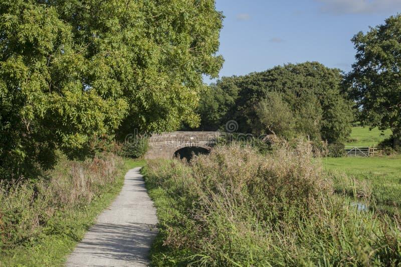 Staffordshire; Brytyjska wieś na słonecznym dniu; łąki i ścieżka fotografia stock