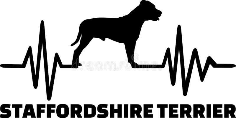 Staffordshire Bull Terrier heartbeat. With silhouette royalty free illustration
