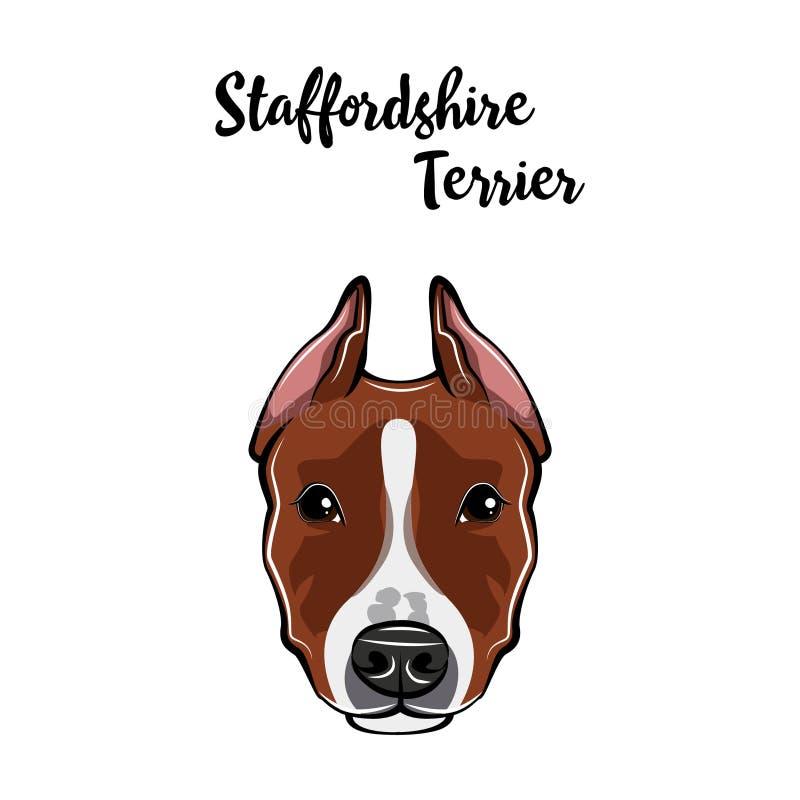 Staffordshire Terrier gezicht Hond hoofdsnuit Staffordshire het ras van de terriërhond Vector stock illustratie