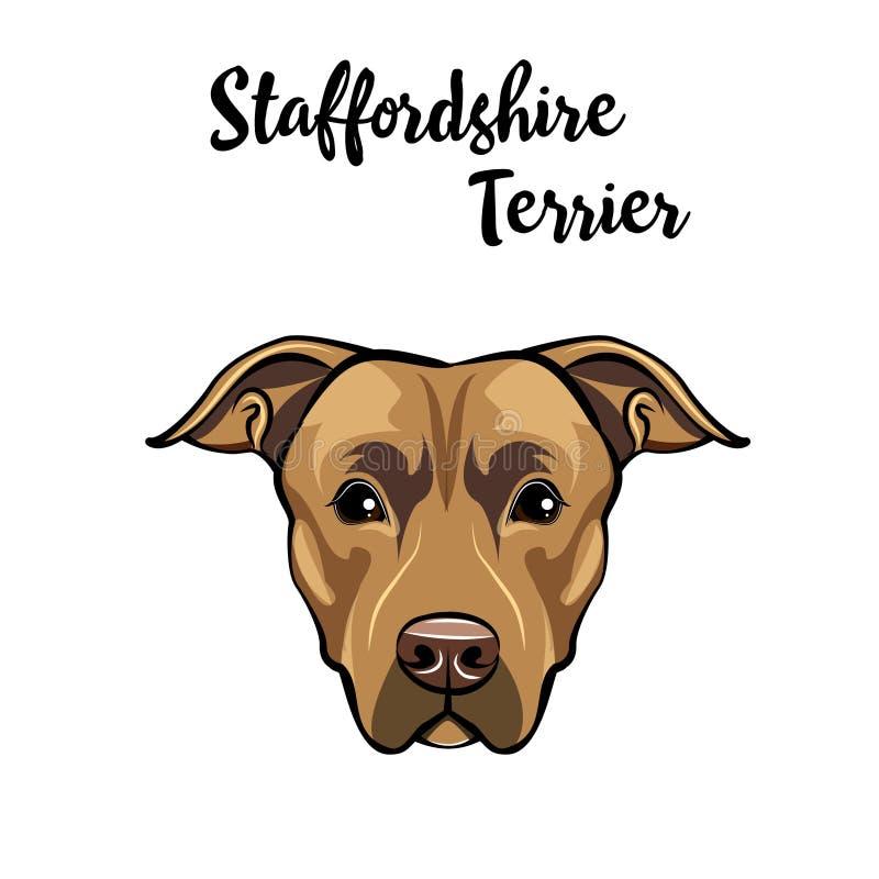 Staffordshire Terrier hondportret Hondras Staffordshire terriërhoofd, gezicht, snuit Vector vector illustratie