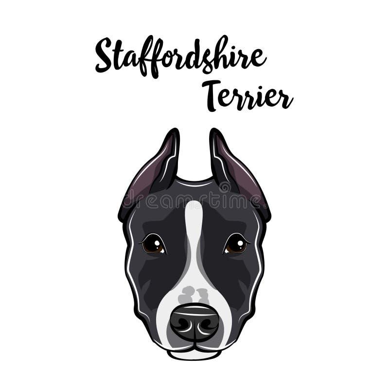 Staffordshire Terrier Portret Hondhoofd Staffordshire terriërras Vector stock illustratie
