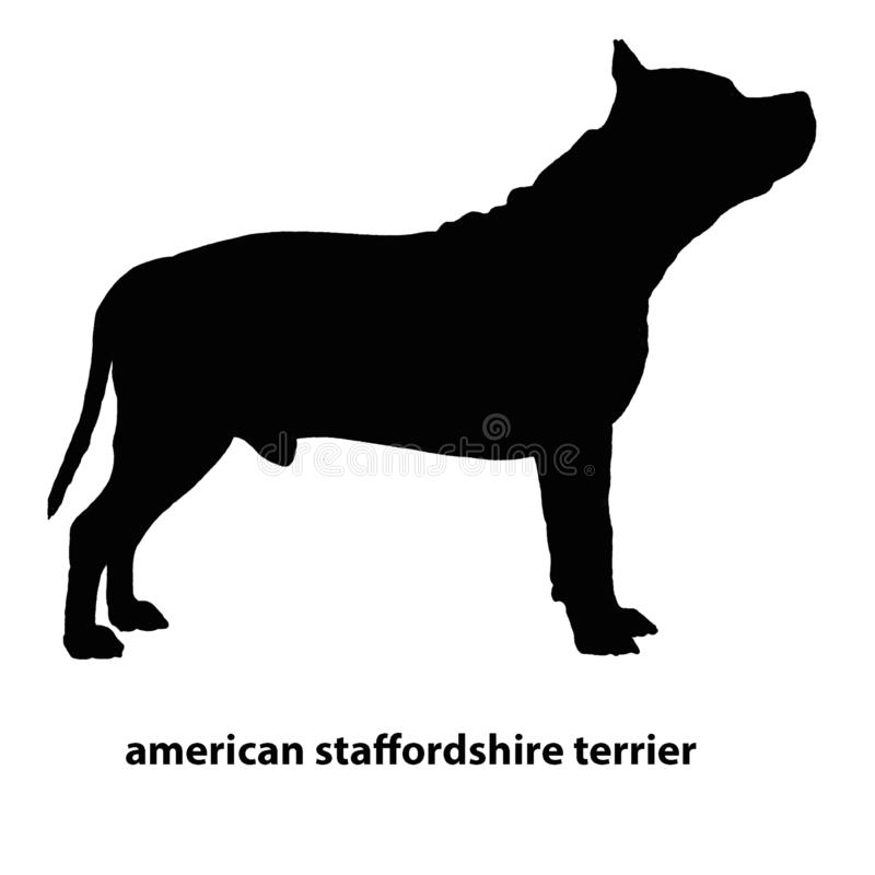 Staffordshire Terrier vectorsilhouetreeks vector illustratie