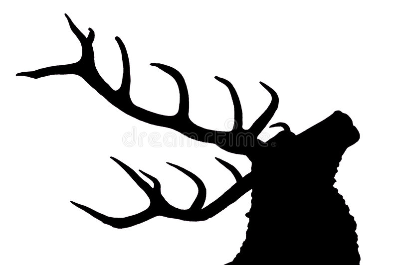 Stag. Black & white silhouette of stags head