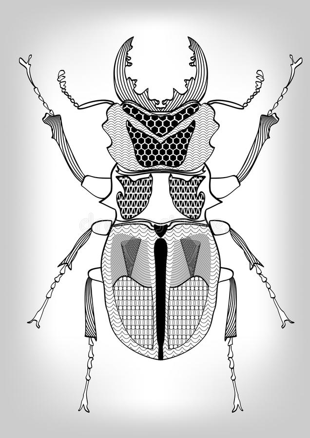 Stag-beetle, black and white drawing of beetle decorated with patterns. Symmetric drawing, insect on gray gradient backg stock illustration