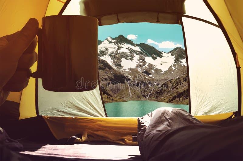 Stag i tält i natur Begreppet av att fotvandra och liv i det löst arkivfoton