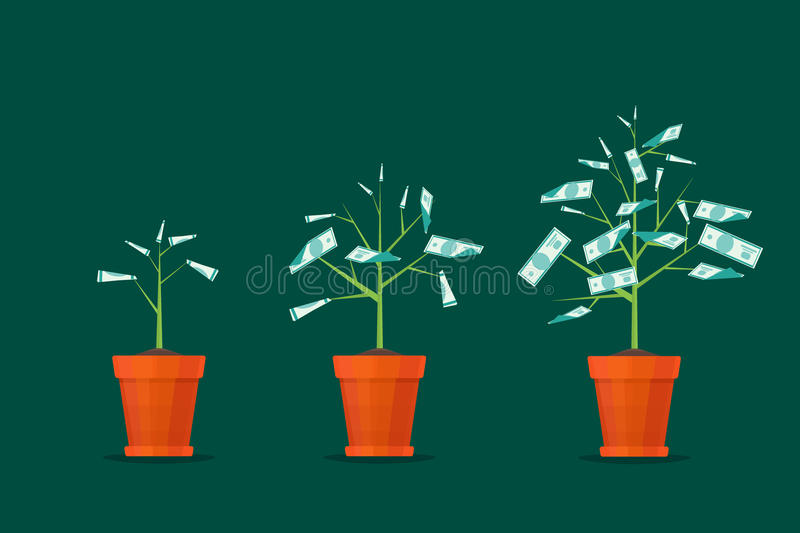 Stage Growth of a Tree Money. Vector stock illustration