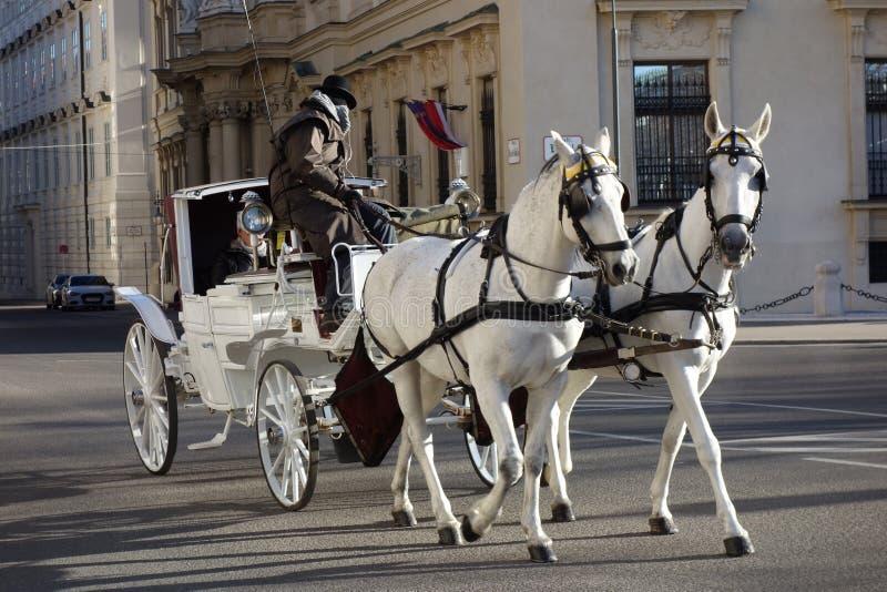 Stagecoach, der Leute am Herzen von Wien transportiert stockfotos