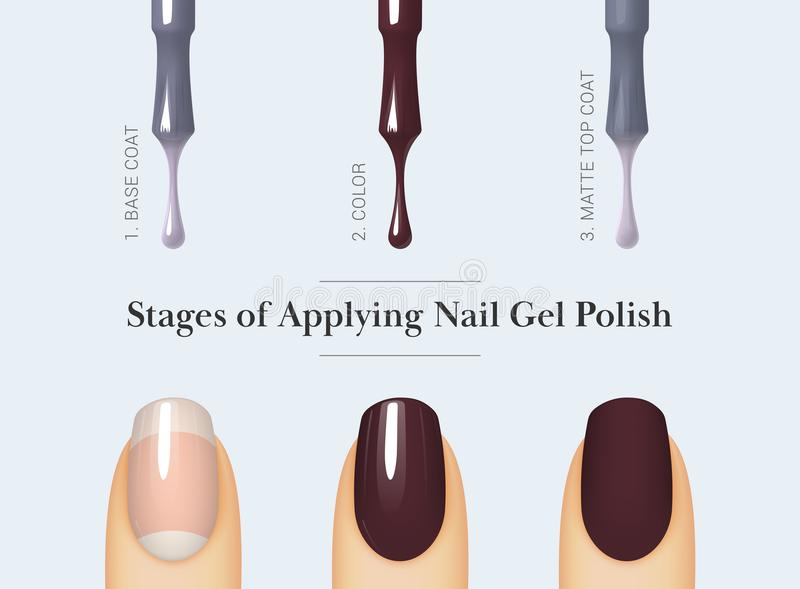 Stage of applying nail gel polish. Stages of applying nail gel polish. Brush for nail polish bottle. Isolated on white background. Female finger with manicure stock illustration