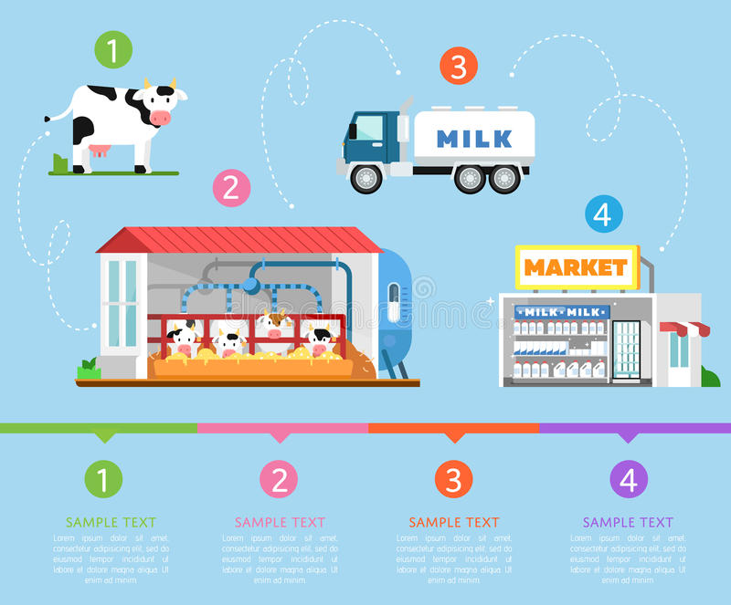 Stages of milk production infographics royalty free illustration