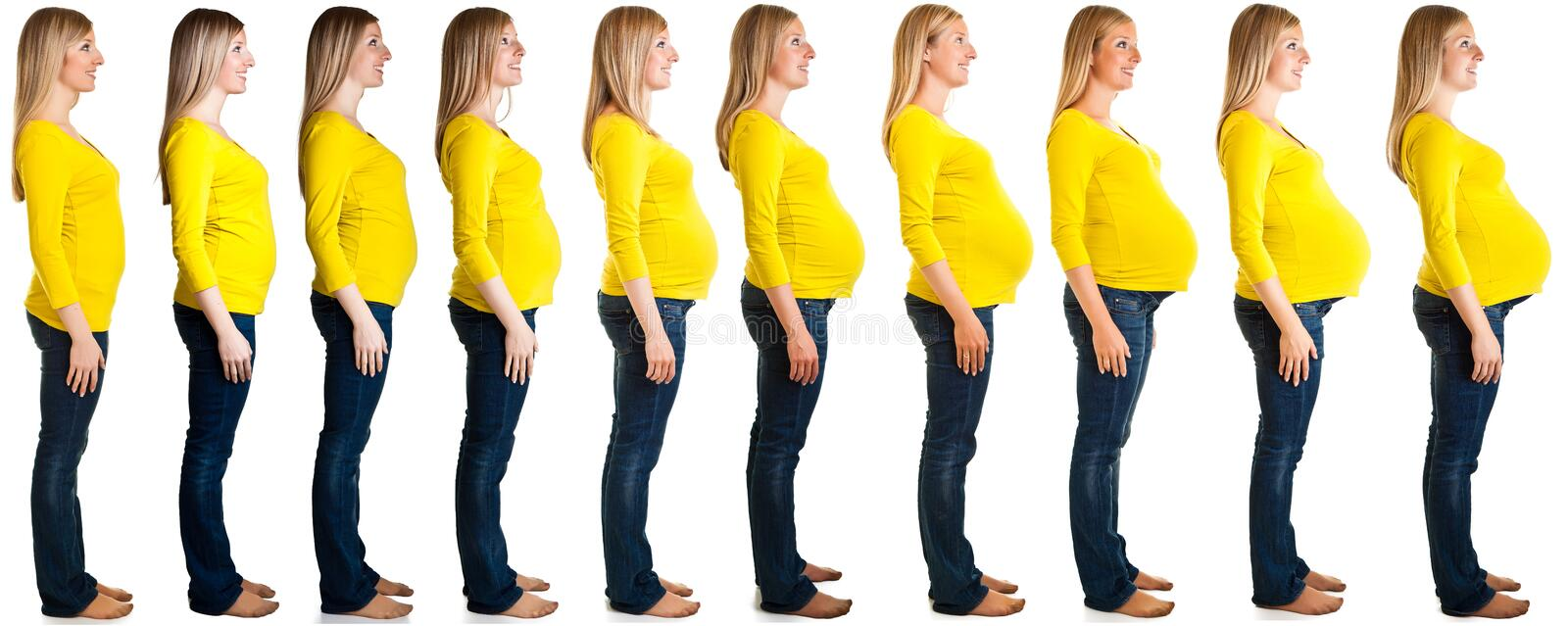 Stages of pregnancy royalty free stock photo