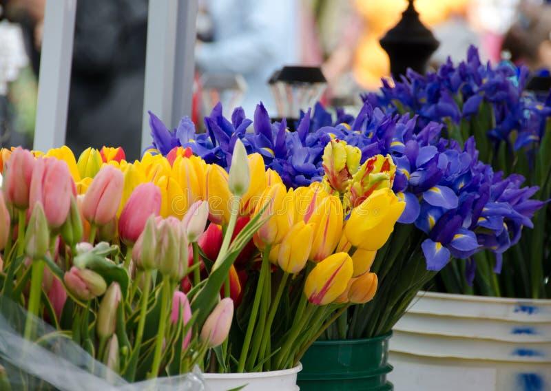 Stagione del fiore della primavera al mercato dell'agricoltore di Redmond immagini stock
