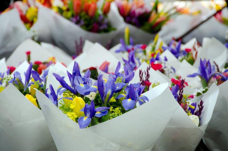 Stagione del fiore della primavera al mercato dell'agricoltore di Redmond fotografie stock libere da diritti