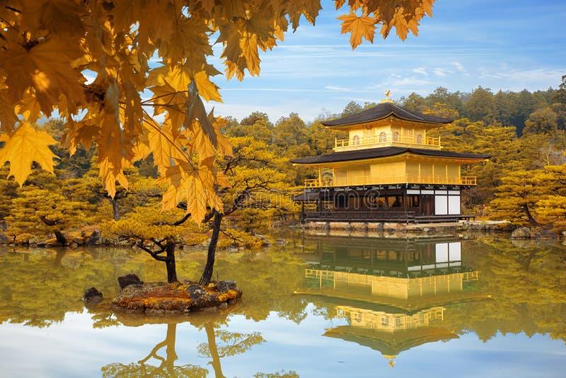 Stagione di autunno del Giappone del tempio di Kinkakuji il padiglione dorato dentro immagine stock