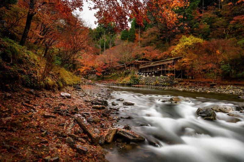 Stagione di autunno di Kyoto immagine stock libera da diritti
