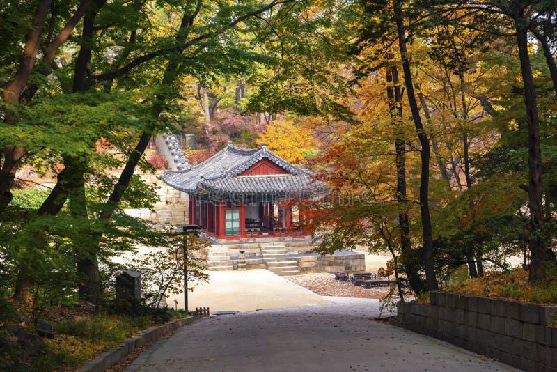 Stagione di autunno in giardino del palazzo Seoul Corea del Sud di Changdeokgung fotografia stock
