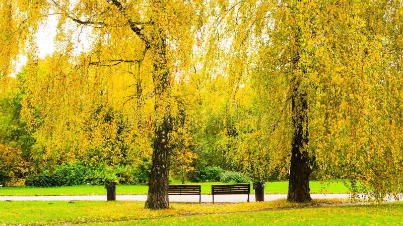 Stagione di autunno nella città immagini stock