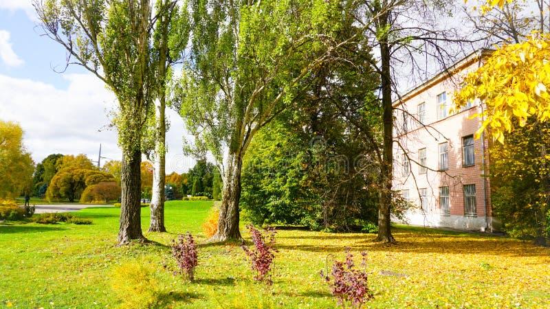 Stagione di autunno nella città immagine stock